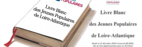 Livre blanc des Jeunes de Loire-Atlantique pour les élections régionales